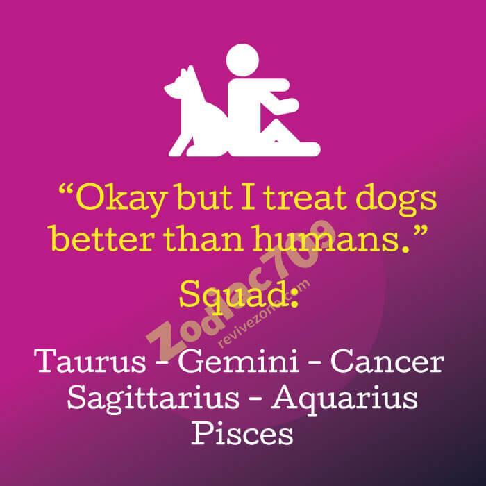 Okay-I-treat-dogs