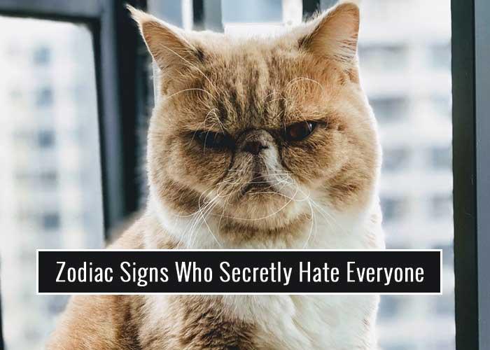 Zodiac Signs Who Secretly Hate Everyone